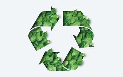 How To Be More Environmentally Friendly